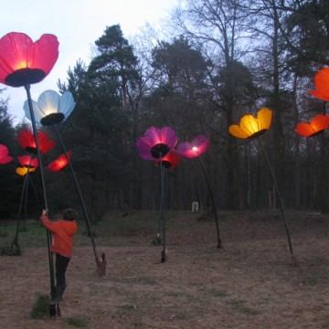 Feest-van-Licht-Museumpark-Orientalis-5
